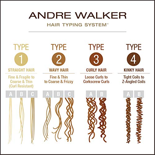 andré walker hair typing system