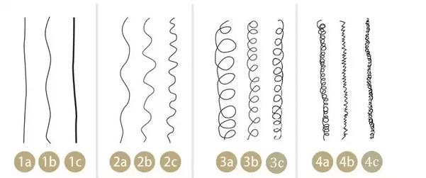 classification mèche de cheveux